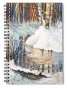 Birch Trio II Spiral Notebook