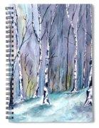 Birches In The Forest Spiral Notebook