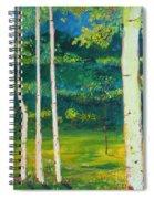 Birches Spiral Notebook