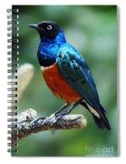 Bird 2 Spiral Notebook