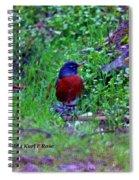 Bird 3 Spiral Notebook
