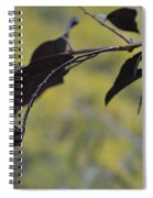 Bird Bait Spiral Notebook