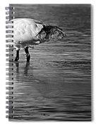 Bird Drinking Spiral Notebook