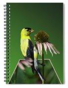 Bird Eating Seeds Spiral Notebook