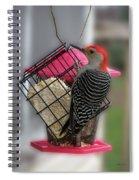 Bird Feeder Wp 06 Spiral Notebook
