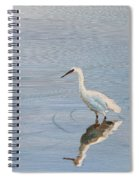 Bird In A Pond Spiral Notebook
