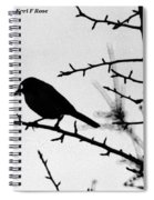 Bird In B And W Spiral Notebook