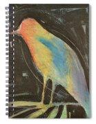 Bird In Gilded Frame Sans Frame Spiral Notebook