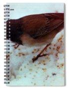 Bird In Snow 2 Spiral Notebook