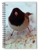 Bird In Snow Spiral Notebook