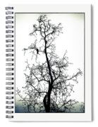 Bird In The Branches Spiral Notebook