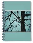 Bird In Tree Spiral Notebook