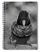 Bird In Your Face Bw Spiral Notebook