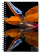 Bird Of Paradise Reflective Pool Spiral Notebook