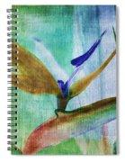 Bird Of Paradise Watercolor Spiral Notebook