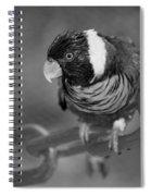 Bird On A Chain Spiral Notebook