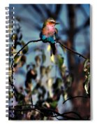 Bird On A Limb Spiral Notebook