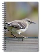 Bird On The Fence Spiral Notebook