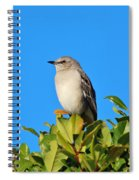 Bird On Tree Top Spiral Notebook