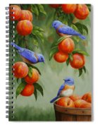 Bird Painting - Bluebirds And Peaches Spiral Notebook