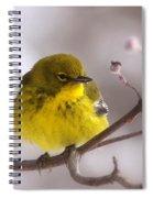 Bird - Pine Warbler - Yellow Beauty Spiral Notebook