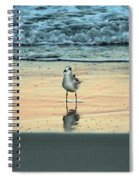 Bird Reflection Spiral Notebook