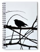 Evening Silhouettes Spiral Notebook