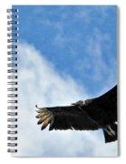 Bird The Black Vulture Spiral Notebook