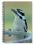 Birdbath Spiral Notebook