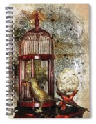 Birdcage Brass Bird And Carved Stone  Spiral Notebook