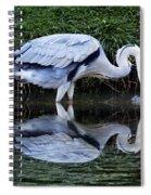 Birds 20 Spiral Notebook