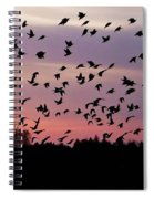 Birds At Sunrise Spiral Notebook