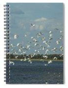 Birds In Flight Spiral Notebook