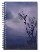 Birds In The Night Spiral Notebook