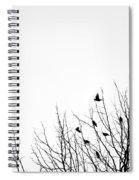 Birds In Tree Spiral Notebook