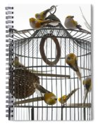 Birds Inside And Outside A Cage Spiral Notebook