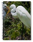 Birds Of A Feather Spiral Notebook