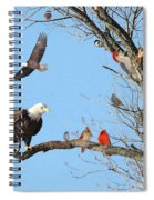 Birds Of A Feather Spiral Notebook