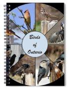 Birds Of Ontario Spiral Notebook