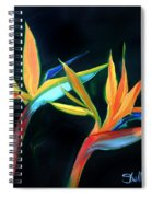 Birds Of Paradise Spiral Notebook