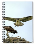 Birds Of Prey Spiral Notebook