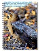 Birds Of The Air Spiral Notebook