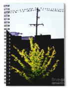 Birds On A Wire In Cooper Young Spiral Notebook