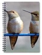 Birds On A Wire Spiral Notebook