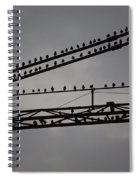 Birds On Crane Spiral Notebook
