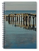 Birds On Old Dock On The Bay Spiral Notebook