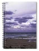 Birds On The Beach Spiral Notebook