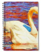 Birds On The Lake Spiral Notebook