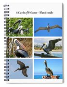 Birds - Pelicans - Boxed Cards Spiral Notebook