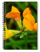 Birdsfoot Trefoil Spiral Notebook
